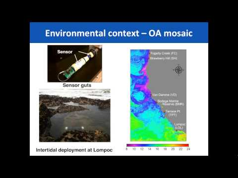 POET Webinar What Biologists and Resource Managers Need to Know About Ocean Acidifi