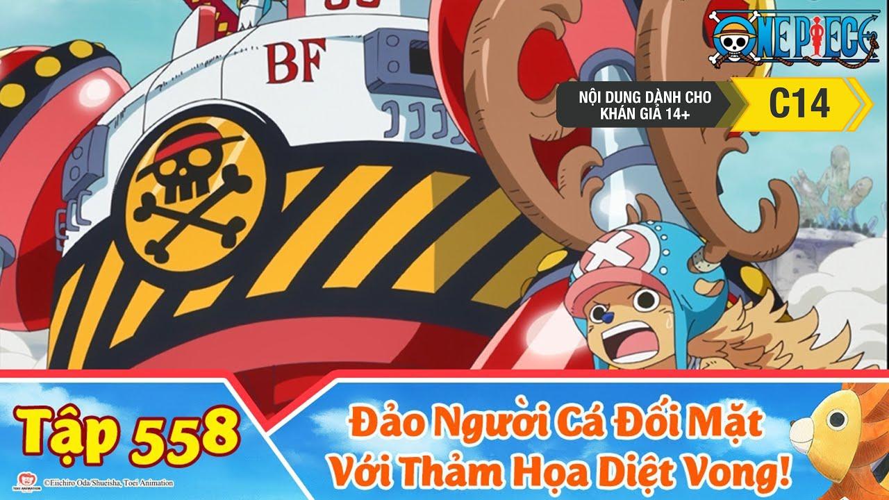 One Piece Best Cut Tập 558: Tàu Noah Tiến Đến! Đảo Người Cá Đối Mặt Với Thảm Họa Diệt Vong!