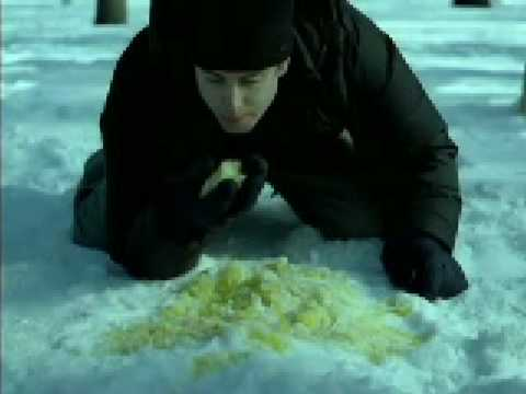 Miller lite commercial, don't eat yellow snow