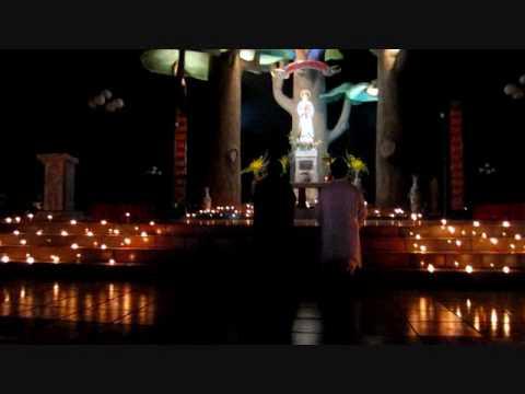 Bác Trạch suy tôn Thánh Giá, đền tạ, cầu nguyện, hiệp thông với Đồng Chiêm