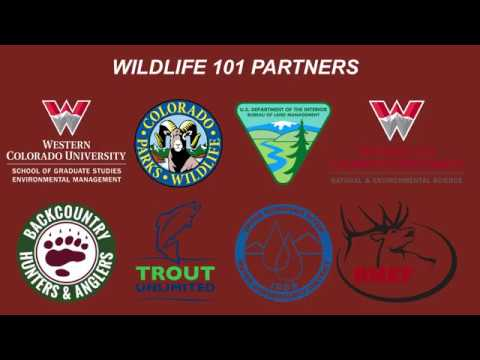 Wildlife 101: Humans and Wildlife Biology Night 2