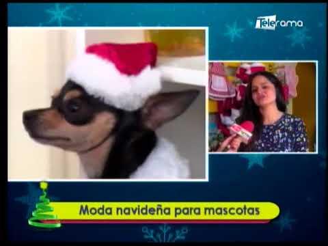 Moda navideña para mascotas