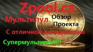 zpool.ca - Мультипул с отличной доходностью(Обзор и запуск)