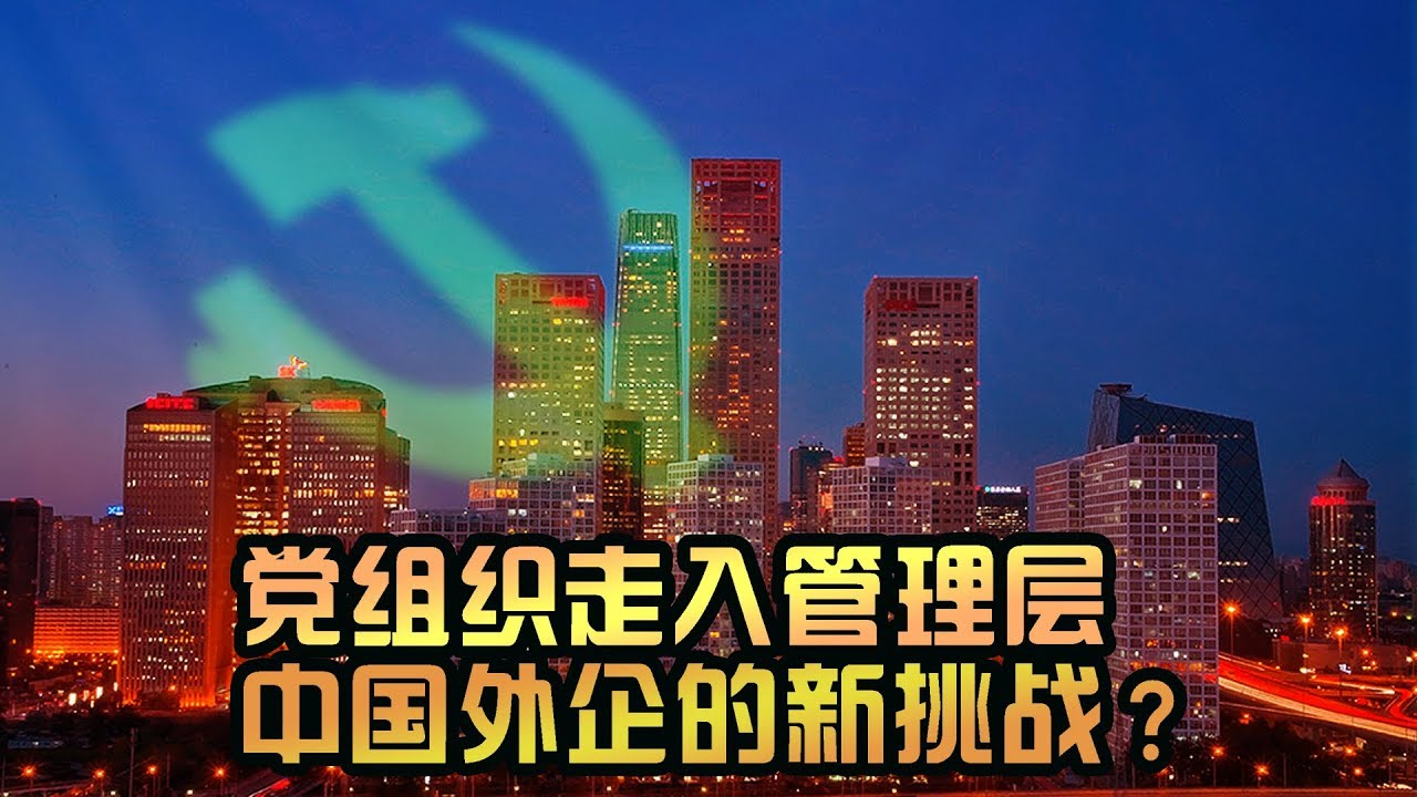 Image result for 外资企业建立党支部