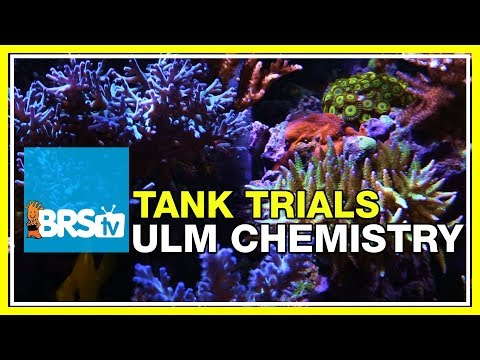 ULM Tank Trials Ep-14: Stable Tank Chemistry for Ultra Low Maintenance | BRStv