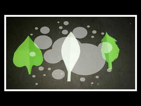 Diy paper leaf 🌿3 type of leaf design 🍃🍀
