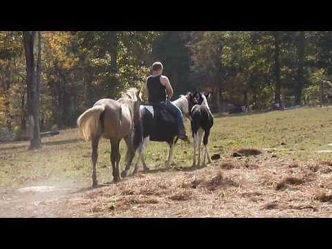My son riding Dixie