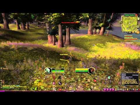 Český Let's Play WoW za Rogue E3: Level 10 a talenty