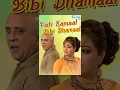 Pati Kamaal Bibi Dhamaal