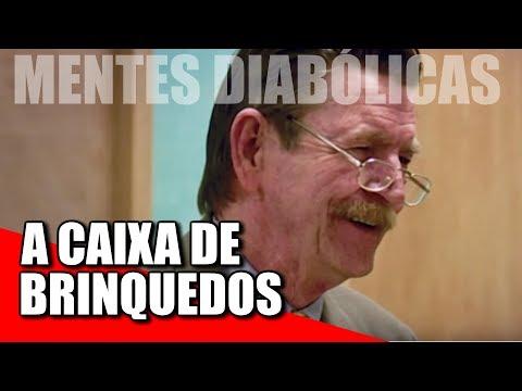 DAVID PARKER RAY E A CAIXA DE BRINQUEDOS
