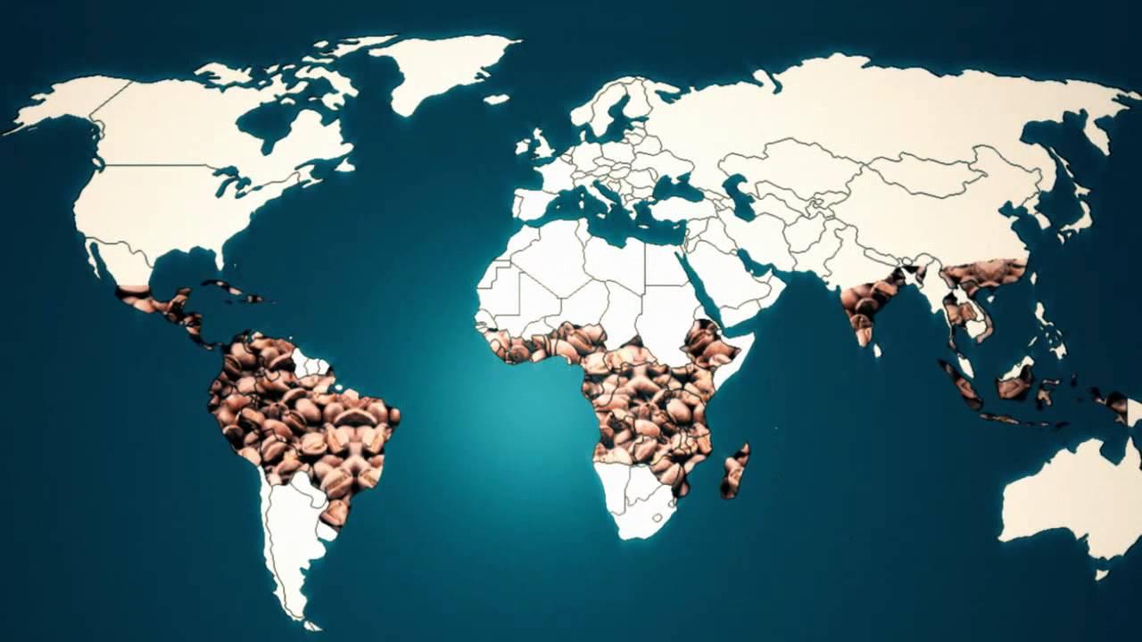 bitcoin seehandel in bitcoin-kapital investieren