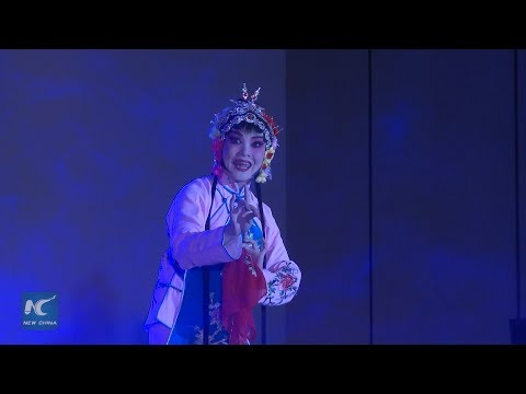 Chinese cultural show animates the night of Sino-Malagasy arts