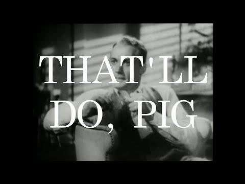 Muscle Vest – That'll Do, Pig