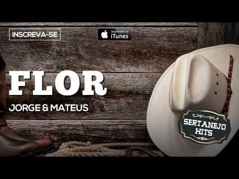 Flor - Jorge & Mateus (Sertanejo Hits)