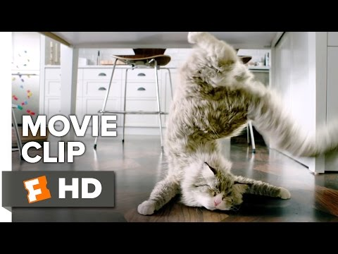 Nine Lives Movie CLIP - Moment of Privacy (2016) - Kevin Spacey Movie