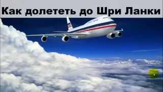 видео Туры на Шри-Ланку из Москвы
