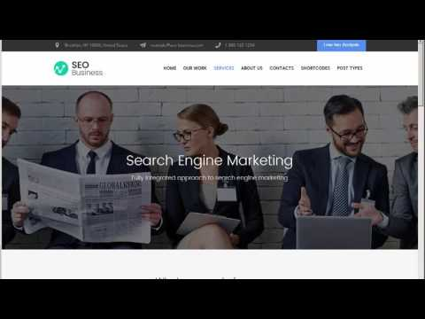 SEO Business – SEO, Social Media & Marketing WordPress Theme by cmsmasters Download