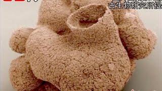 全球最古老6亿岁海绵 / 600 million years old sponge discovered in Guizhou