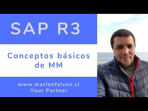 8.1 Curso SAP MM | Clase 01 Conceptos básicos de MM SAP/R3