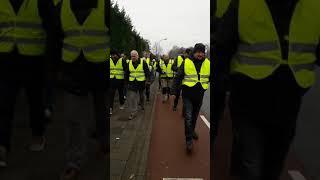 5e wandeling gele hesjes Maastricht