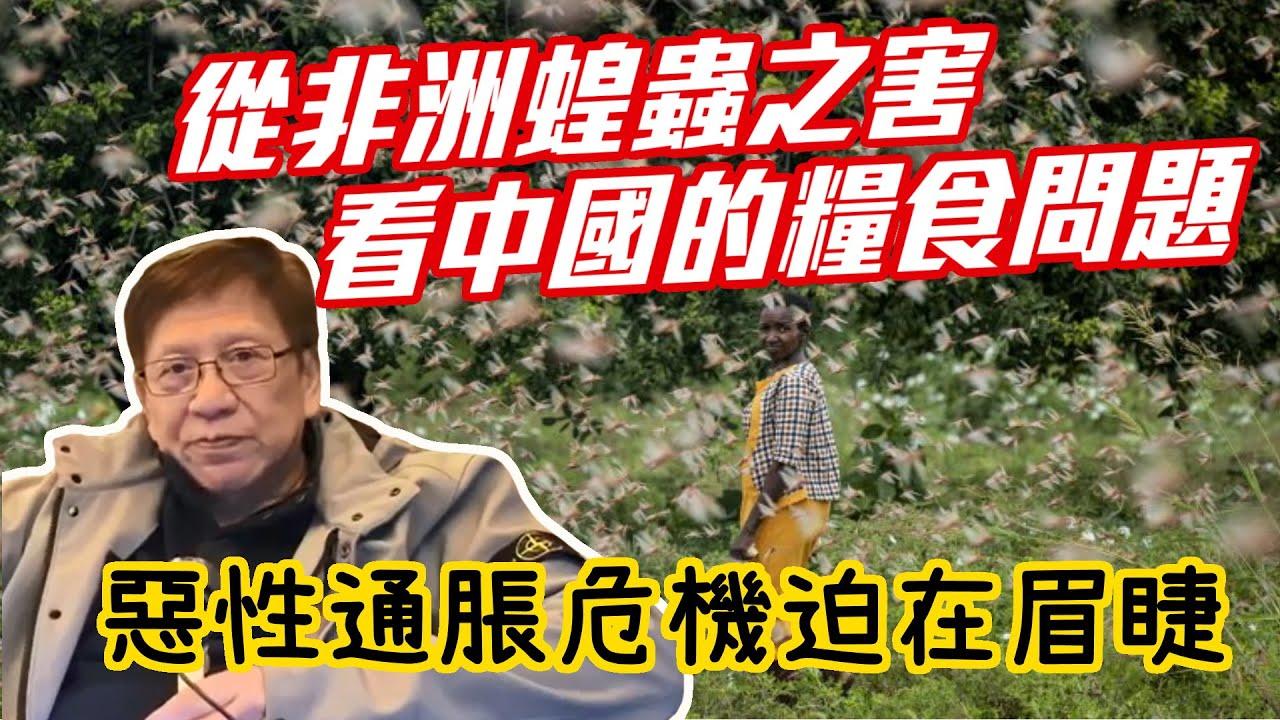 從非洲蝗蟲之害看中國的糧食問題 惡性通脹危機迫在眉睫〈蕭若元:蕭氏新聞臺〉2020-02-18 - YouTube