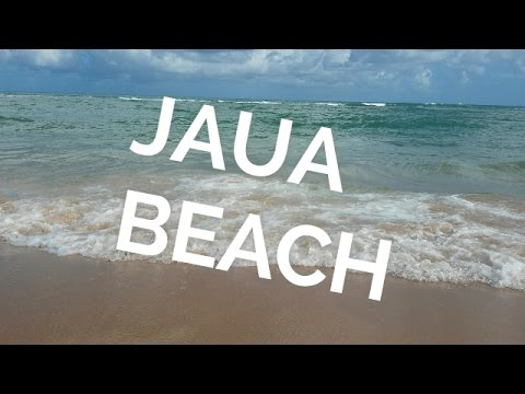 Let's Travel! : Jaua (AFS Brazil 2017)
