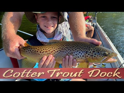 August 26, 2020 Arkansas White River Trout Fishing Report