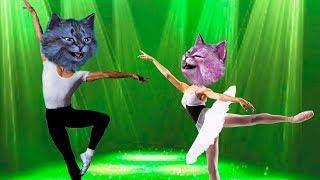 ОТПРАВИЛИСЬ С ЛЕО В КОРОЛЕВСКУЮ АКАДЕМИЮ БАЛЕТА В РОБЛОКС! The Royal Ballet Academy of Roblox