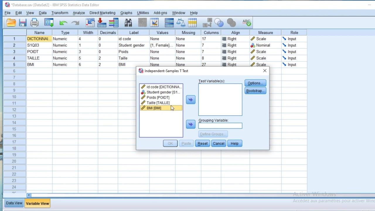 How to run independent sample student test in SPSS software
