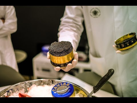 How CAVIAR Is Made! Exclusive Visit Of The OLDEST SUSTAINABLE STURGEON FARM In The World.