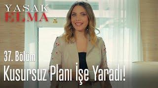 Gambar cover Yıldız, Kemal'den kurtuldu! - Yasak Elma 37. Bölüm
