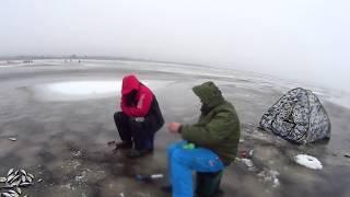 Супер Риболовля на Чудському озері !Велика плотва на прикормку д. Спицино