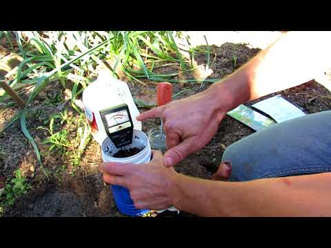 How to Properly Use pH Meters in the Garden - Soil Prep, Averaging & Cleaning: Rapitest & Burpee