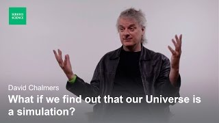 Skepticism and the Simulation Hypothesis — David Chalmers