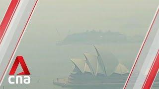 Hazardous Smoke Blankets Sydney As Bushfires Continue To Burn