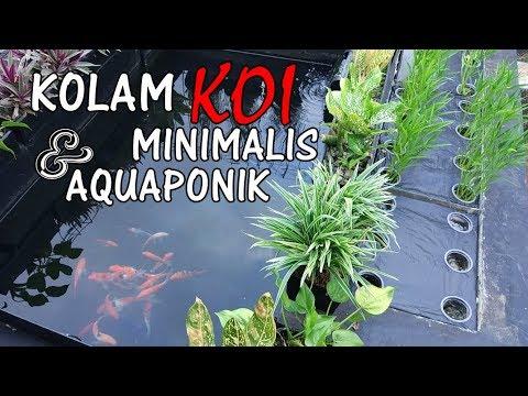 desain kolam aquaponik   contoh-contoh arsitek