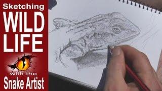 Jacky Lizard and Nude Sculptures