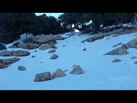 Το χιονισμένο τοπίο στο δρόμο για το Καθαρό