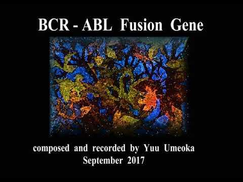 BCR-ABL Fusion Gene / Yuu Umeoka