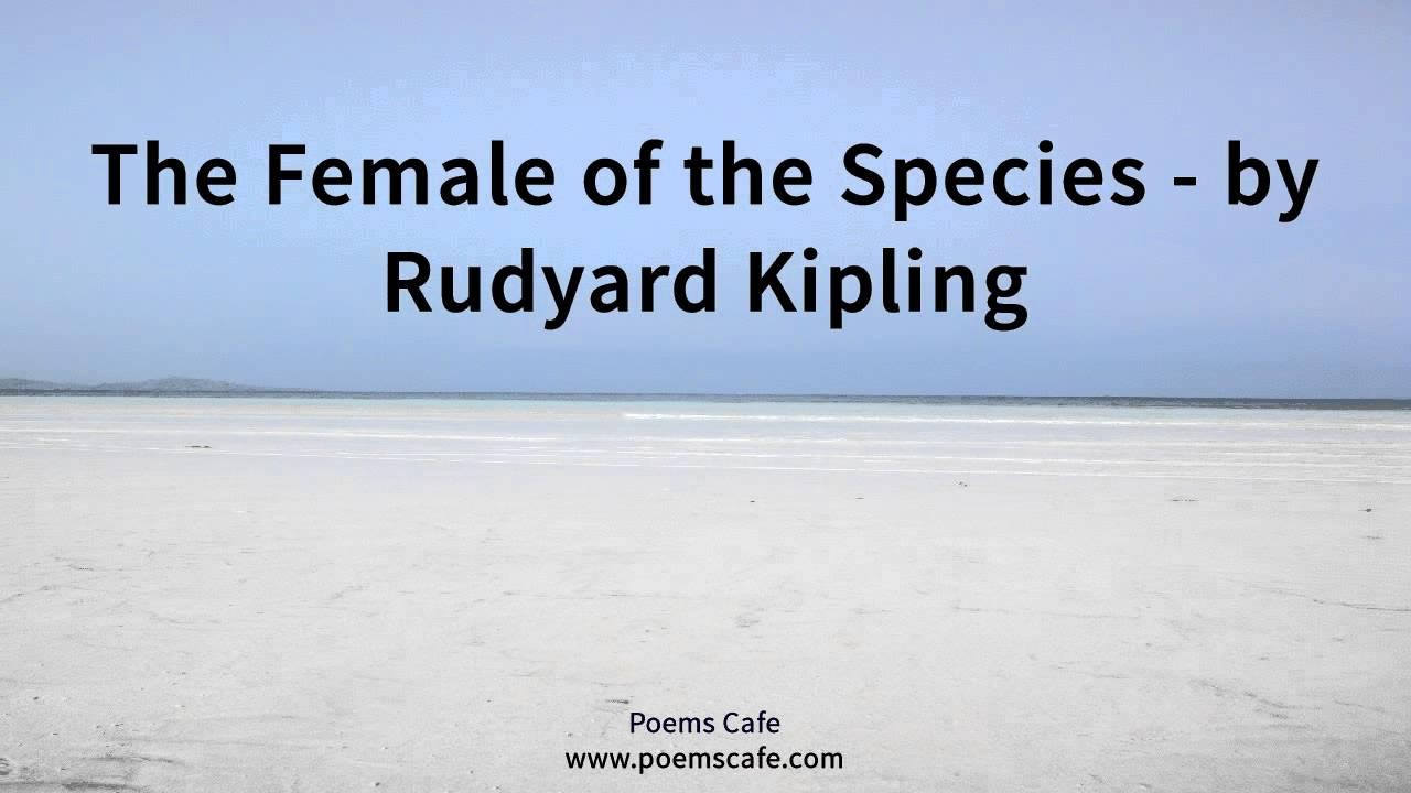 rudyard kipling the female of the species
