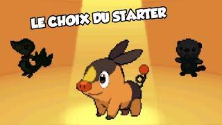 POKÉMON VERSION NOIRE #1 - LE CHOIX DU STARTER