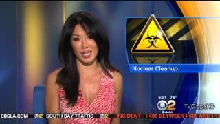 Sharon Tay 2015/09/09 CBS2 Los Angeles HD