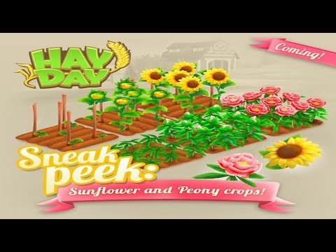 Hay Day Sneak Peek 3 – New Crops – Sunflower and Peony