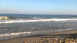 Złote Piaski - szum morza
