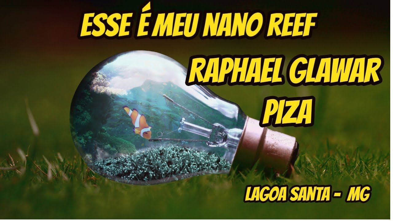 Esse é meu NANO REEF - Raphael Glawar  Piza