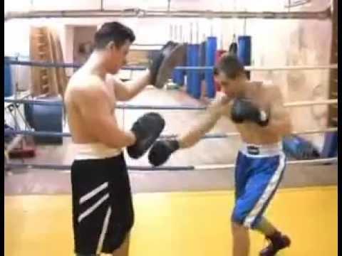 Скачать бесплатно видео обучение боксу философское образование в европе
