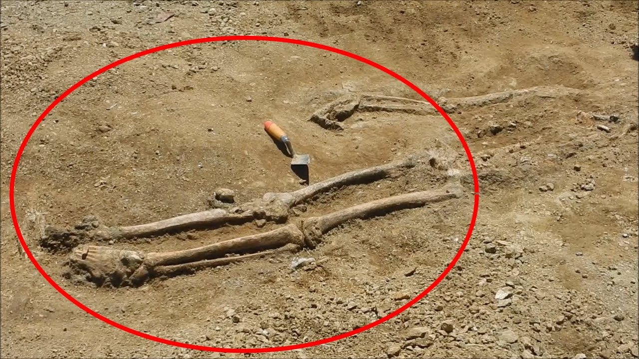 human skeleton found - curaçao 2016 - youtube, Skeleton