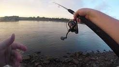 Stripe Bass fishing Fort Loudoun Dam
