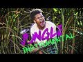 nasty c jungle official instrumental