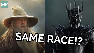 Sauron and Gandalf are the same SPECIES?!?
